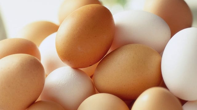 Poultry industry records drop in egg production  