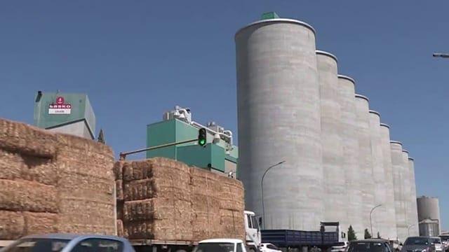 Nature's Mill Five Star Nutri Flour with Finger Millet/Ragi (454 g ...