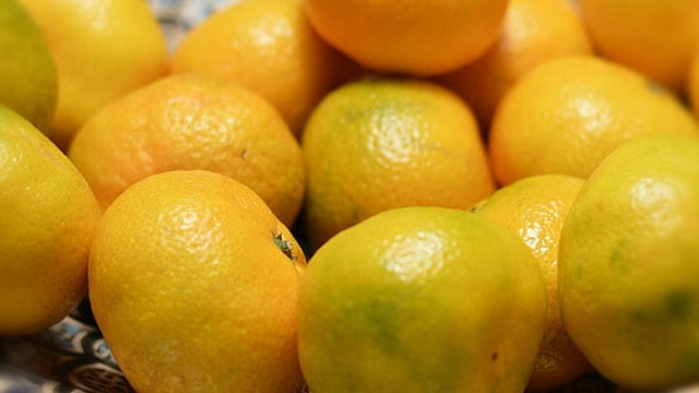 Rwanda ban on fruits from SA remains on issues around Listeria  